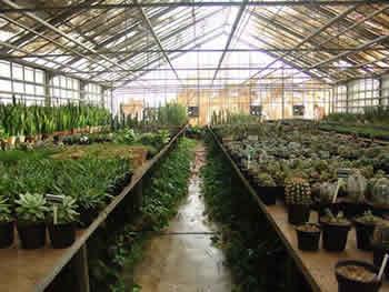 مهندس کشاورزی - مسیر ایرانی