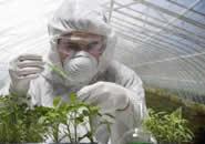گیاه پزشک - مسیر ایرانی